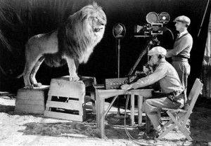 Photo historique de Leo The Lion, mascotte de la MGM en plein tournage dans la cage du lion